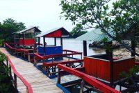 Hutan Mangrove Pantai Dewi Mandapa Pesawaran
