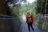 Panjang Situ Gunung Suspension Bridge Sukabumi