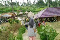 Pemandangan Kampung Wisata Tirta Agung Bondowoso