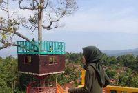 Penginapan Di Puncak Mas Lampung