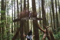 Alamat Hutan Pinus Asri Jogja