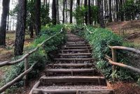 Alamat Hutan Pinus Pengger Jogja
