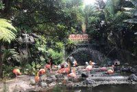 Batu Secret Zoo Jatim Park 2 Batu Malang