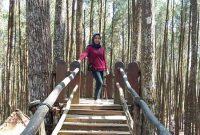 Fasilitas Hutan Pinus Mangunan Jogja