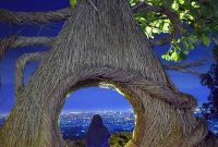 Harga Tiket Masuk Hutan Pinus Pengger Jogja