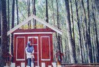 Jam Buka Hutan Pinus Asri Jogja