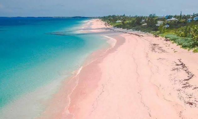 Jam Buka Pantai Pink Lombok Timur