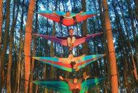 Lokasi Hutan Pinus Pengger Jogja