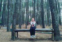 Rute Hutan Pinus Mangunan Jogja