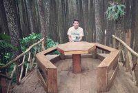 Spot Foto Hutan Pinus Asri Jogja