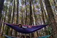 Wahana Hutan Pinus Mangunan Jogja