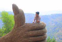 Wahana Hutan Pinus Pengger Jogja