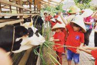 Alamat Kuntum Farm Field Bogor