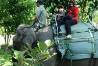 Fasilitas Gembira Loka Zoo Jogja