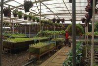 Fasilitas Kuntum Farm Field Bogor