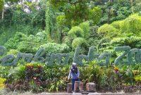 Harga Tiket Masuk Gembira Loka Zoo Jogja