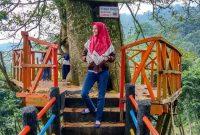 Jalan Menuju Curug Cipamingkis Bogor