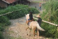 Jalan Menuju Kuntum Farm Field Bogor