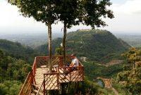 Jalan Menuju Rumah Pohon Habitat Langkat
