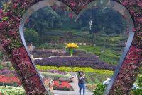 Jalan Menuju Taman Selecta Malang