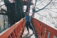 Rumah Pohon Curug Ciherang Bogor