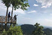 Spot Foto Rumah Pohon Habitat Langkat