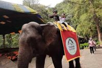 Wahana Taman Safari Bogor