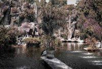Harga Tiket Masuk Ragunan Zoo Jakarta