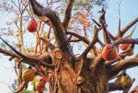 Spot Foto Lembang Wonderland
