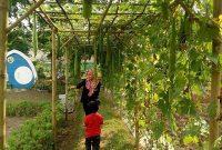 Wahana Taman Buah Mekarsari Bogor