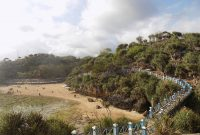 Jalan Menuju Pantai Kukup Gunungkidul Jogja