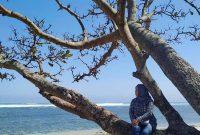 Lokasi Pantai Balekambang Malang
