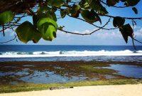 Lokasi Pantai Pok Tunggal Gunungkidul