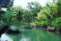 Rute Sungai Cokel Pacitan