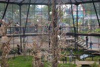 Lokasi Lembang Park Zoo